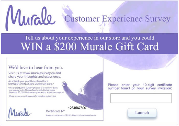 Murale Customer Experience Survey form