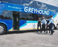 Greyhound Customer Experience Survey