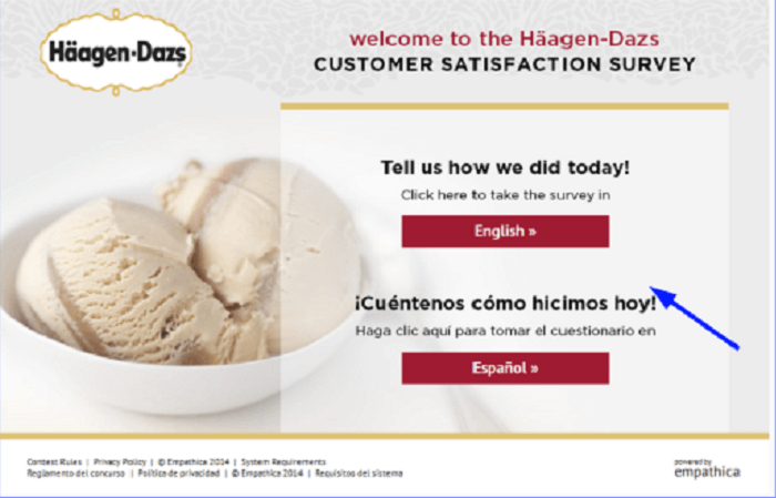 Häagen-Dazs Customer Satisfaction Survey form
